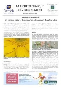 Fiche n°1 sur Coenosia attenuata