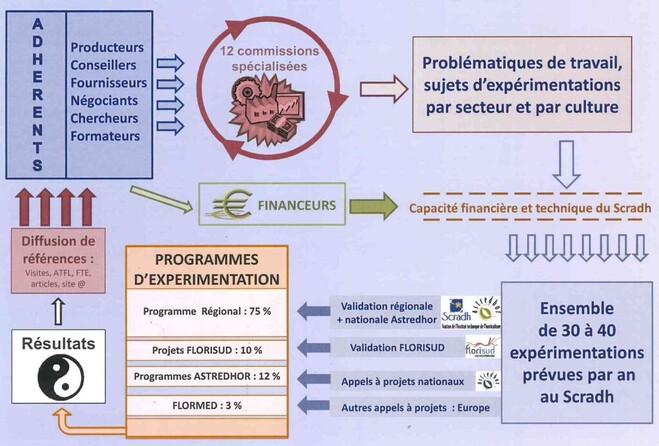 schéma de fonctionnement du Scradh (2011)
